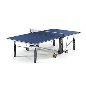 250 Indoor Table Tennis